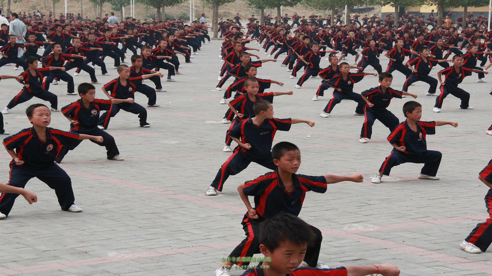 传承着少林寺1500多年的历史,学的都是正宗的少林功夫。那么,在众多的少林功夫中那些比较好学写呢?下面有河南嵩山少林寺武校专家为大家讲解。   传统的少林功夫,是少林寺历代僧人经过很多年的创造和锤炼而成,是中国传统文化中的瑰宝,是中国古代人体运动美学的精华所在。现在,少林功夫技击的功能逐渐退化,其修行、健体、审美和增进民族认同感的社会功能得到了进一步发展,其内涵亦更为丰富和完备。